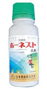 honesuto