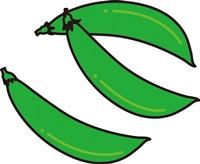 スナッフ繧噬Gント繧刄Eとスナックエンドウの違い