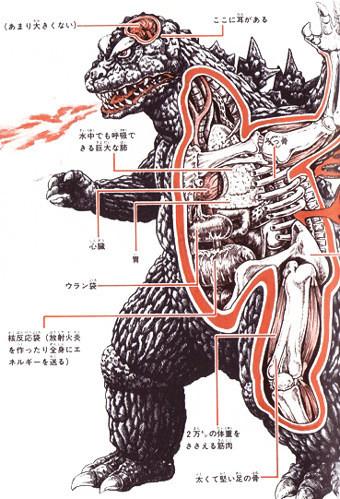 anatomia-godzilla-en-japones