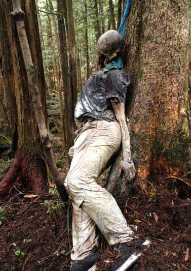 Aokigahara-bosque-suicidios-3
