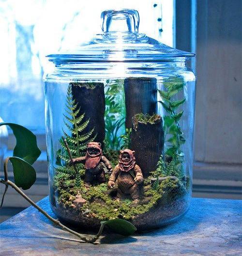 terrario-star-wars-diorama-botella-ewok