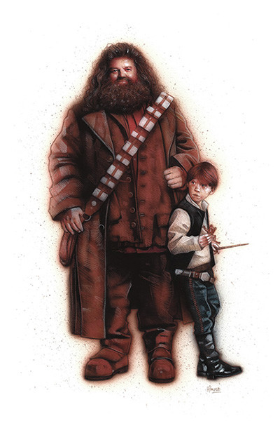 hagrid-chewbacca-ron-han-solo-mash-up-star-wars-harry-potter