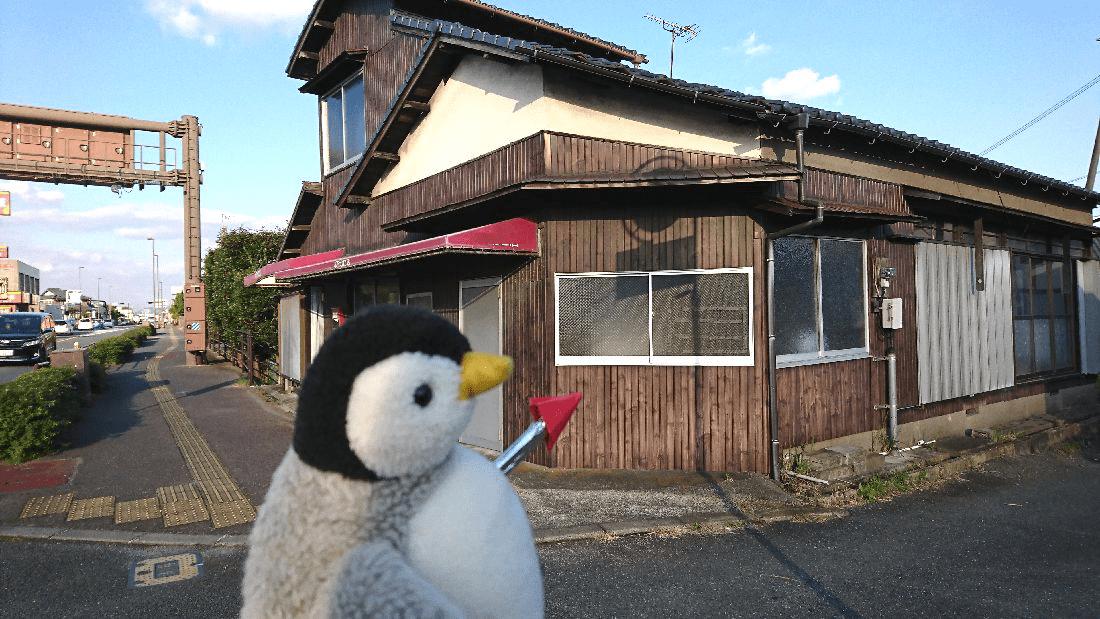 minami-report