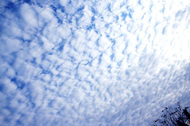 羊雲 意味 季節