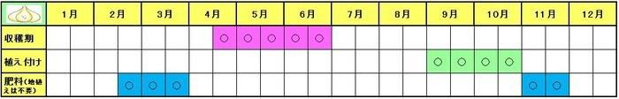 jumboninniku (4)