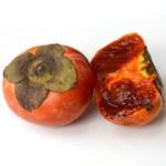 Plaqueminier/ Ciocollatino