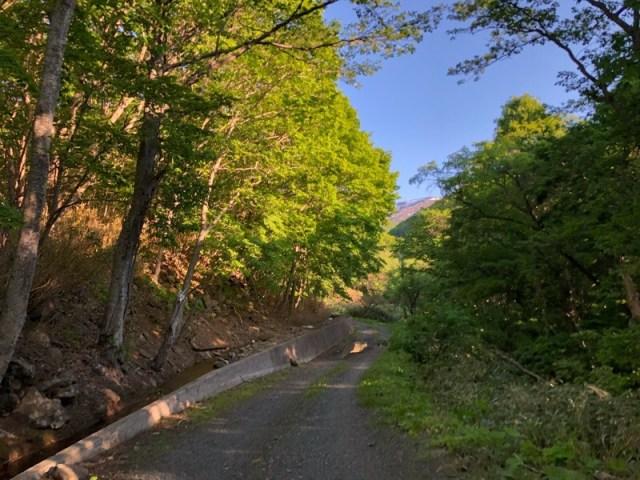 岩内町の観光スポット鳴神の滝は今どうなっている?閉鎖中ということは知っていましたが・・・