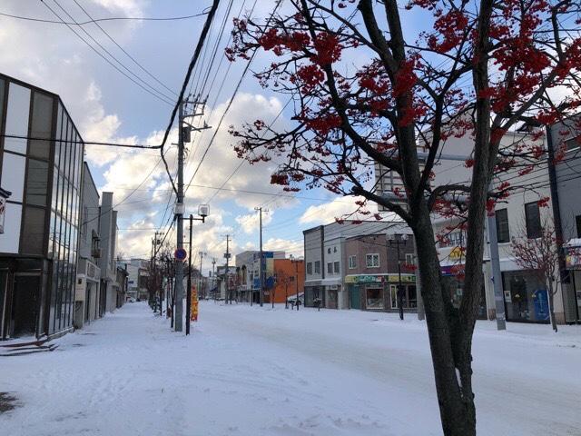 北海道積丹とニセコに位置する岩内町に雪が降る!現在の岩内町の雪景色