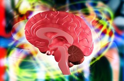 幻視 レビー小体型認知症