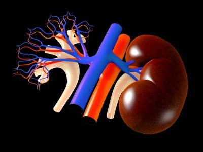 血尿の原因とは?男性に多い病気とその症状について