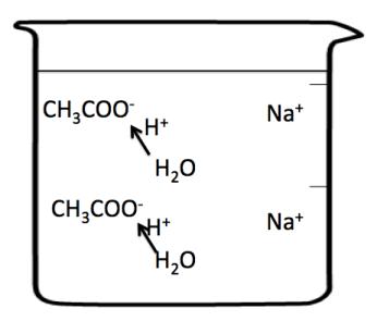 塩の加水分解