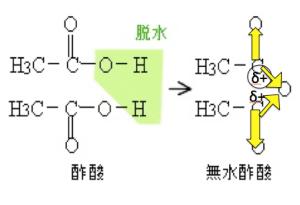 カルボン酸無水物 反応