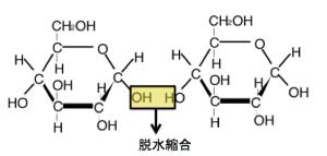 グリコシド結合,脱水縮合