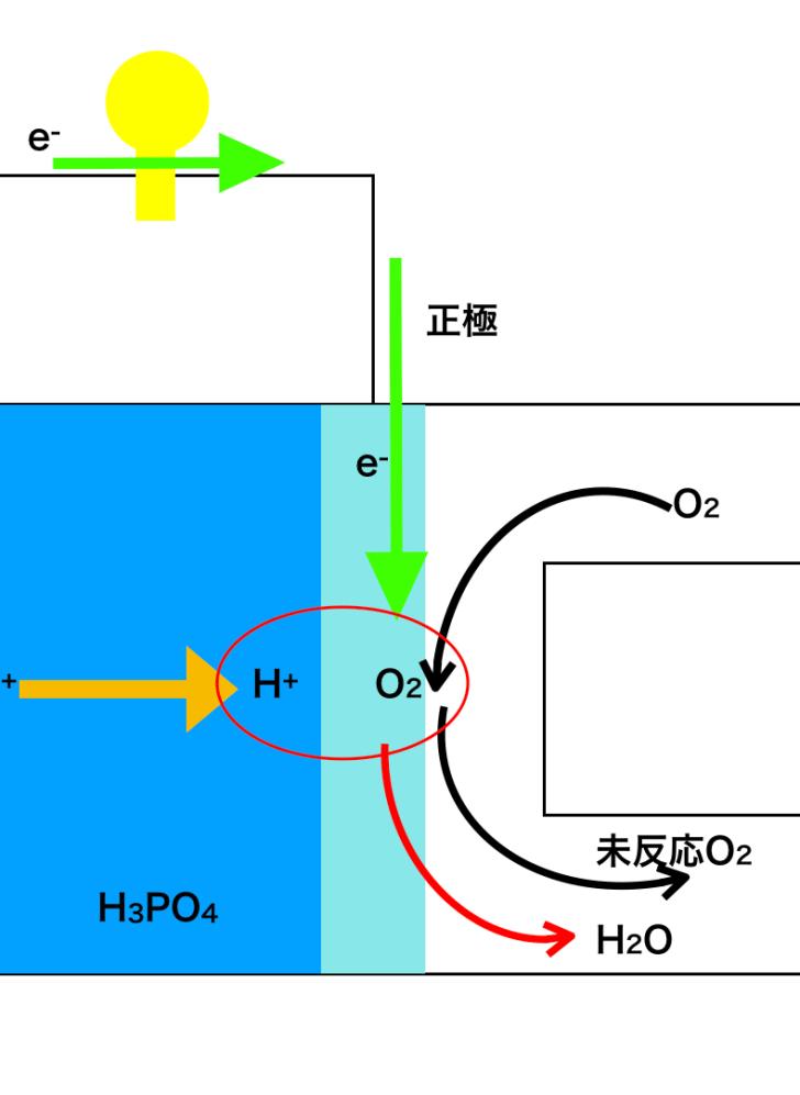 リン酸型の燃料電池の正極