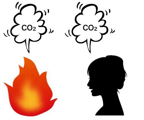燃焼の二酸化炭素と呼吸の二酸化炭素は同じ(定比例の法則)