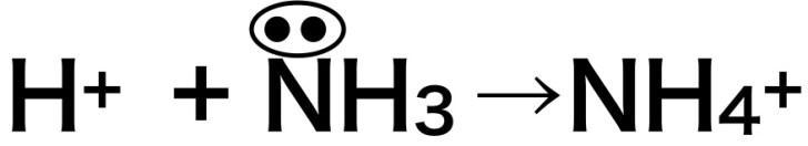 アンモニウム イオン