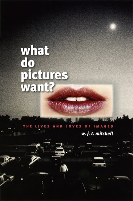 What do pictures want