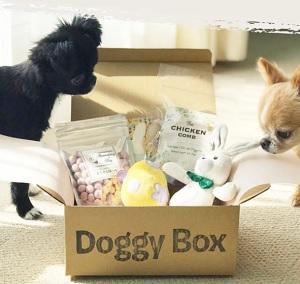Doggy Box(ドギーボックス)クーポン