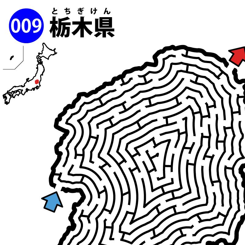 栃木県の迷路 アイキャッチ