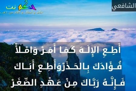 حكم و أقوال عن بر الوالدين 11 مقولة عن بر الوالدين حكم نت