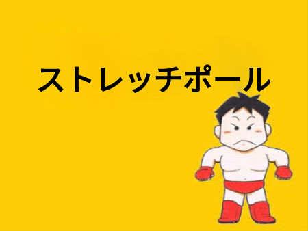 【初期段階】肩こり・腰痛「ストレッチポール」基本的な使い方・効果