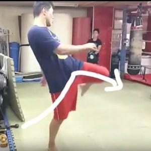UWF打撃テクニック【膝蹴り】【意識する4項目】(+動画)