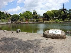 猿沢池園地
