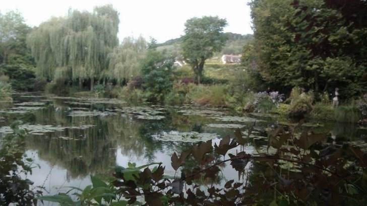 フランスの池