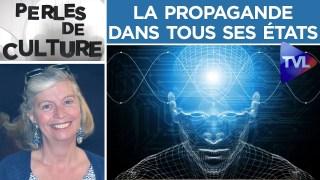 La propagande dans tous ses états – Perles de Culture n°246 – TVL