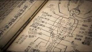 La Médecine Chinoise, 5000 ans d'histoire…
