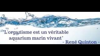 RENÉ QUINTON, LE DARWIN FRANÇAIS