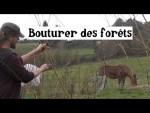 Bouturer des Forêts