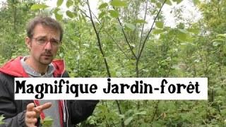 Visite d'un jardin forêt comestible !