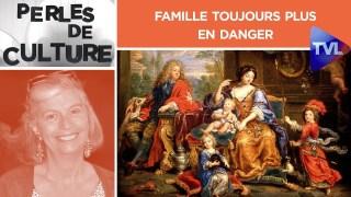 Famille toujours plus en danger – Perles de Culture n°258 – TVL