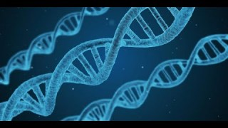 Pourquoi Google cherche-t-il à collecter votre ADN ? (sous-titres français)