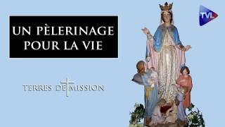 Un pèlerinage pour la vie – Terres de Mission n°182 – TVL