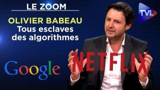 Désordre numérique : tous esclaves des algorithmes – Le Zoom – Olivier Babeau – TVL