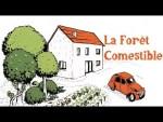 La forêt comestible (le livre)