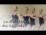 La danse des cygnes
