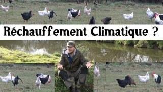 Réchauffement climatique, Éco-anxiété etc…