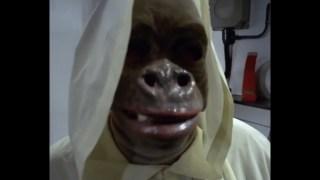 Le singe de Dieu veut vous tracer ?
