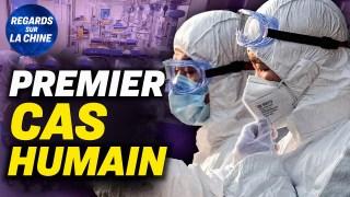 Chine : Premier cas humain de grippe aviaire H10N3 ; Graves inondations dans le sud de la Chine