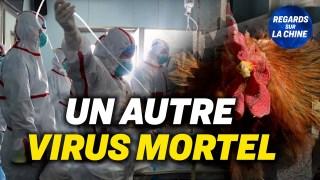 Chine : Un cas humain de grippe aviaire ; Quelle couverture des décès post-vaccinaux en Chine ?