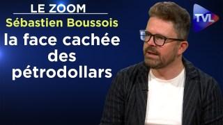 Emirats arabes unis : la face cachée des pétrodollars – Le Zoom – Sébastien Boussois – TVL