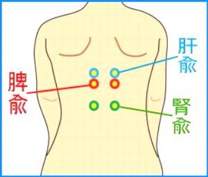 【背中のツボ】内臓や胃の痛みに効くツボの場所はどこ?