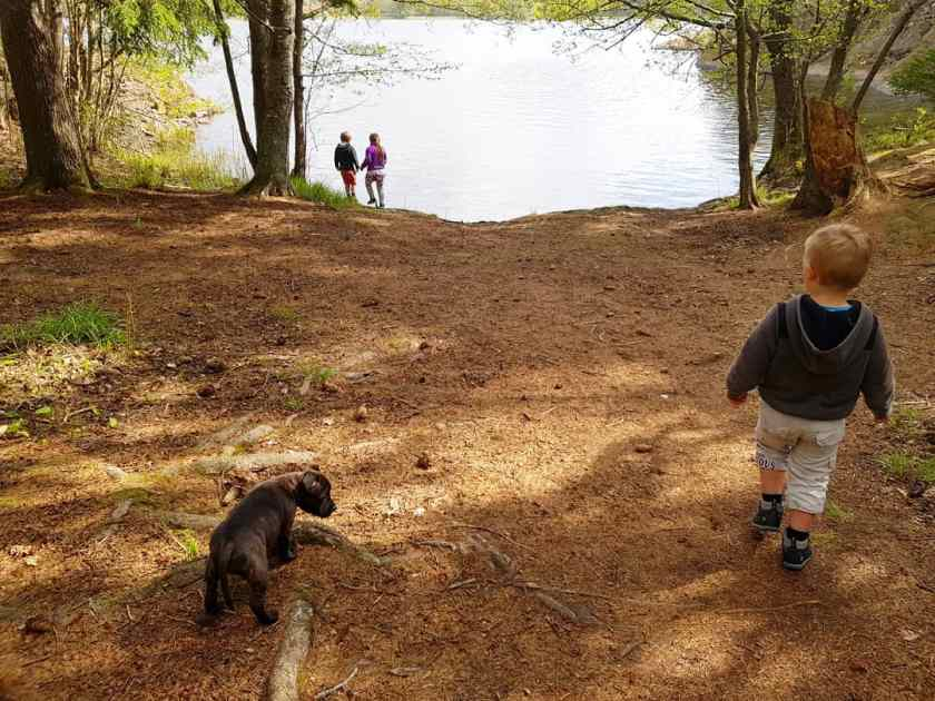 natur leva hälsa barn skärmar