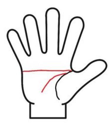 まっすぐなマスカケ線と頭脳線