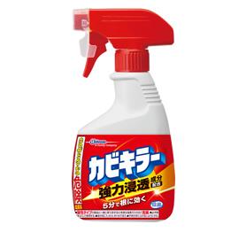 掃除 お風呂 床 扉