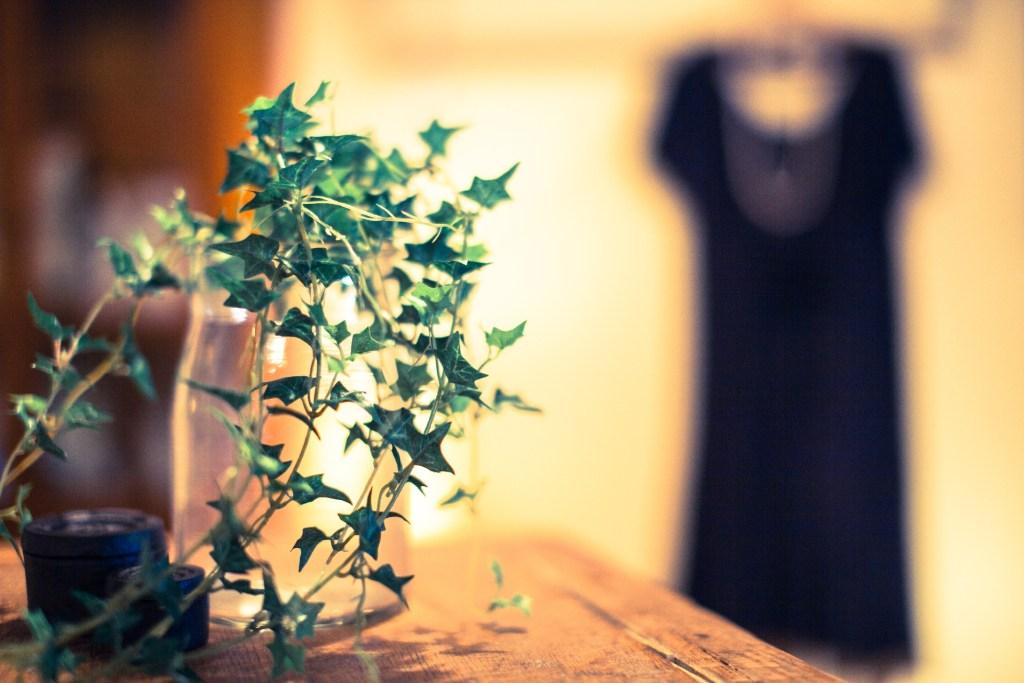 風水 玄関 観葉植物