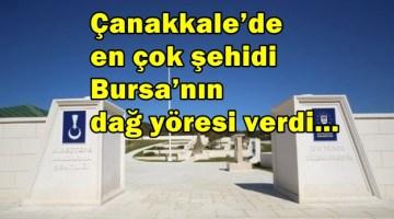 Çanakkale'de en çok şehidi Bursa'nın dağ yöresi verdi…